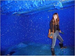 Snapshot 2009-11-04 23-36-03